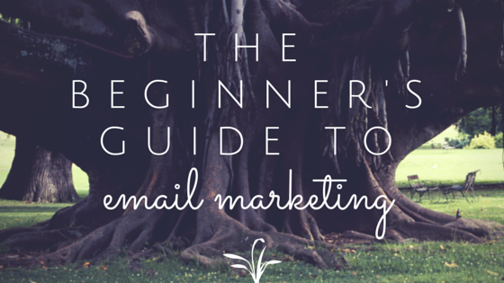 beginners guide email marketing
